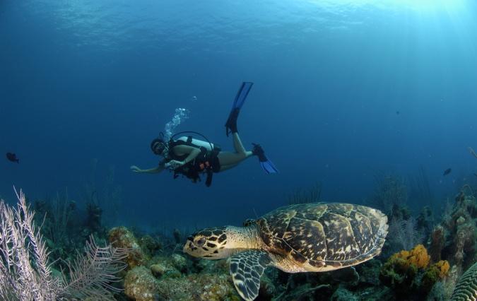 Фото Каймановых островов, Сан-тур