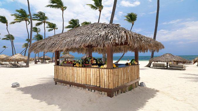 Пунта-Кана и Лос-Хаитисес: кокосовое побережье