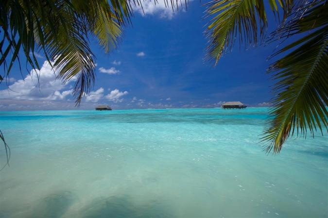 Отель MEDHUFUSHI ISLAND RESORT 5* Мальдивские острова - САНТУР Туроператор