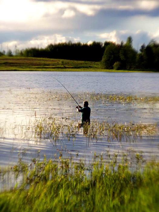 поиск места ловли на пруду