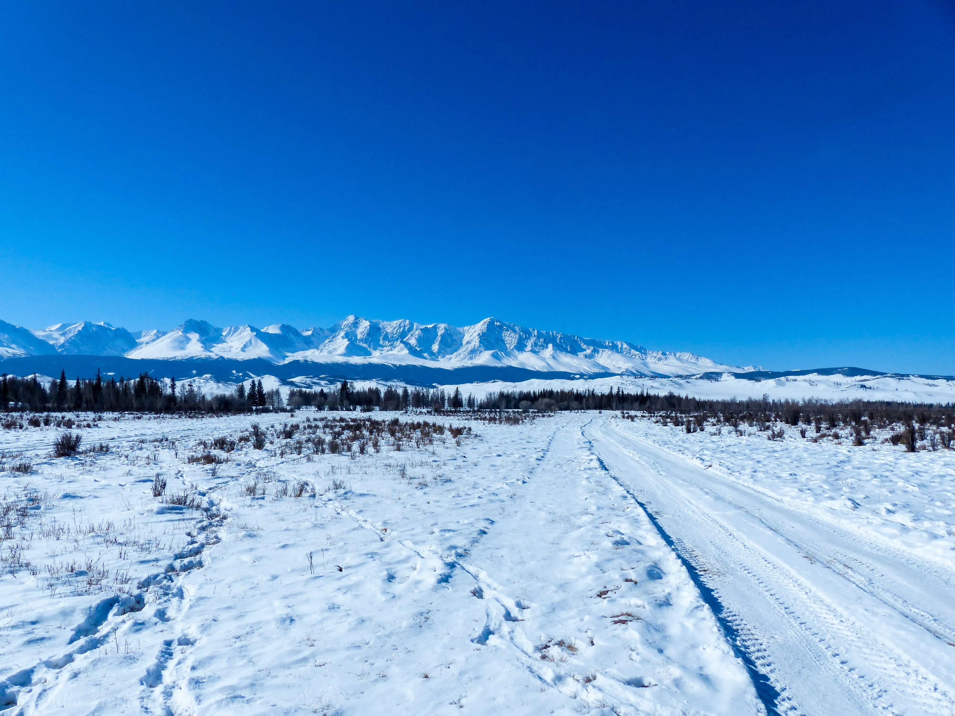 Зимние новогодние туры по Алтаю