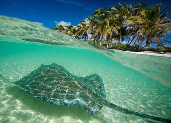 Остров Контой драгоценный камень в естественном состоянии